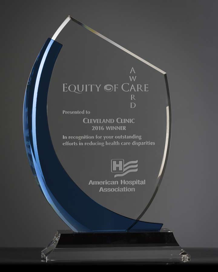 Equity of Care Award